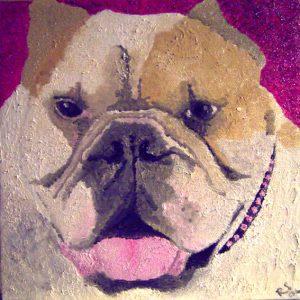 bulldogbig